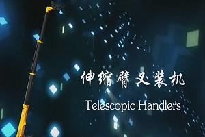 Telescope Handler With Factory Price